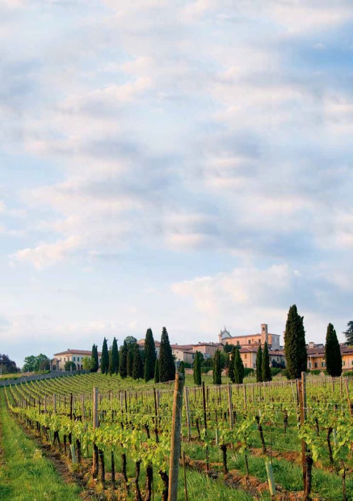 Franciacorta, Italy's answer to Champagne